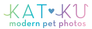 Kat Ku | Modern Dog and Cat Photos. Ann Arbor| Detroit | Chicago| NYC| SF & Beyond